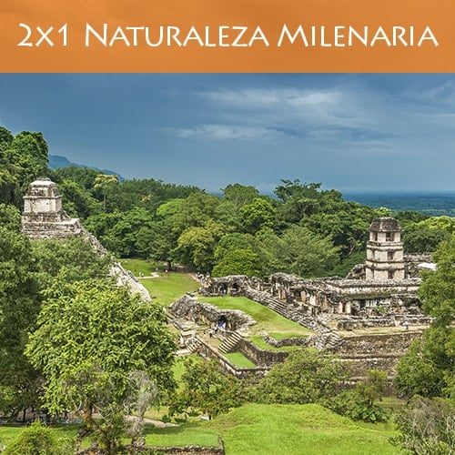naturaleza-milenaria-2x1