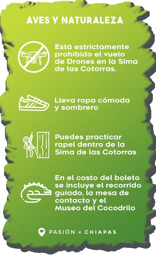 Cañón-del-Sumidero-y-Corzo1